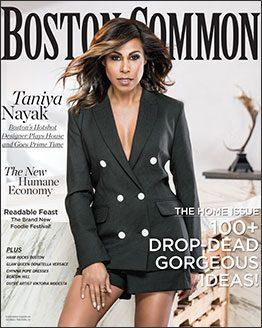 boston-common-cover