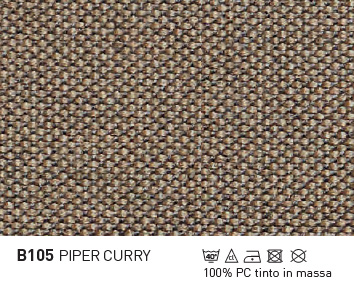 B105-PIPER-CURRY-PTP