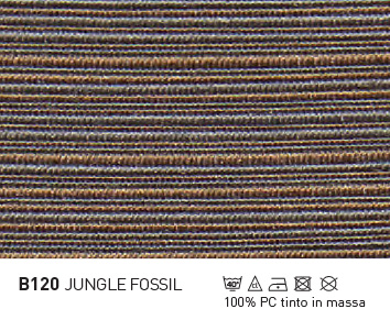 B120-JUNGLE-FOSSIL