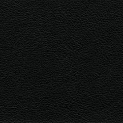 23-010_Nero_1