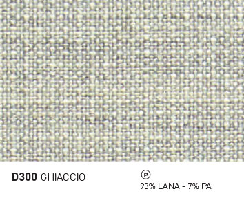D300-GHIACCIO