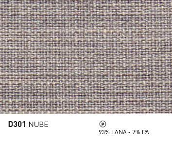 D301-NUBE